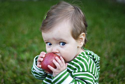 100 ricette con le mele
