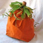 bag pumpkin