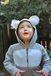 costume koala
