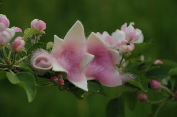 fiori in feltro.jpg