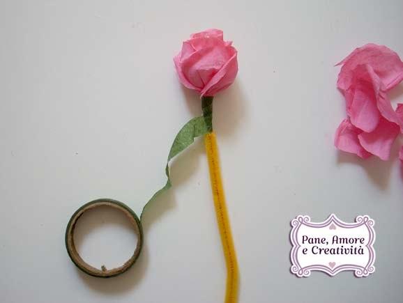 gambo-rosa-1.jpg