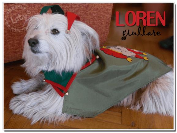 Idee di carnevale: il costume da jolly per il cagnolino