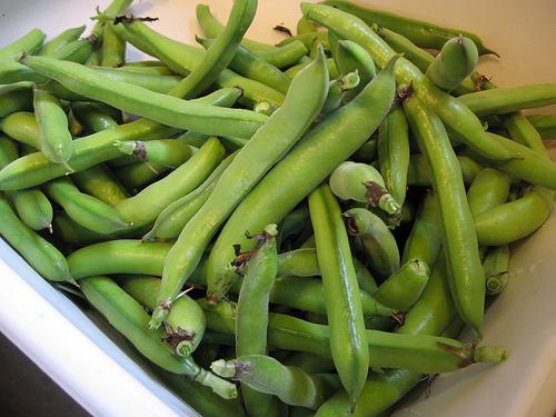 100 ricette con le fave