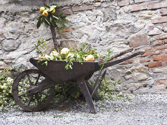 La festa delle giuggiole ad Arquà Petrarca