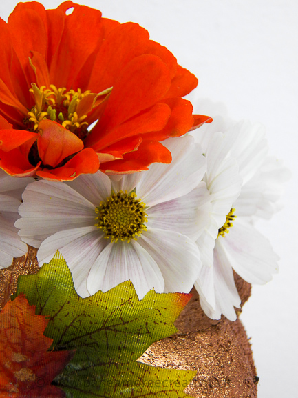 fiori nella zucca portavaso