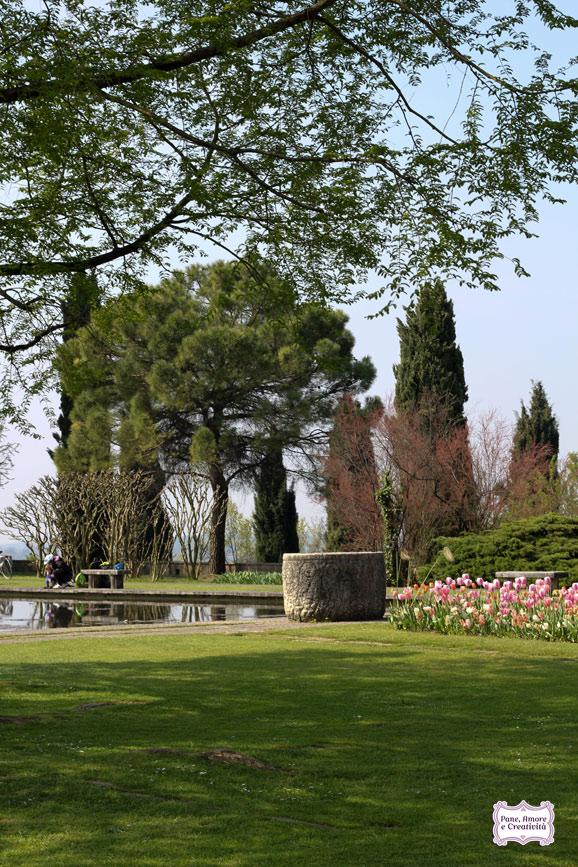 Cose belle da vedere la fioritura di tulipani al parco for Case belle da vedere