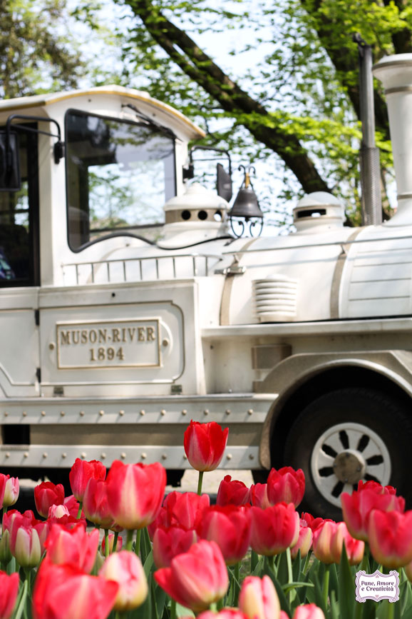 Cose belle da vedere: la fioritura di tulipani al Parco Sigurtà