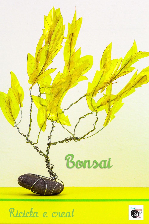 bonsai---riciclare-le-bottiglie