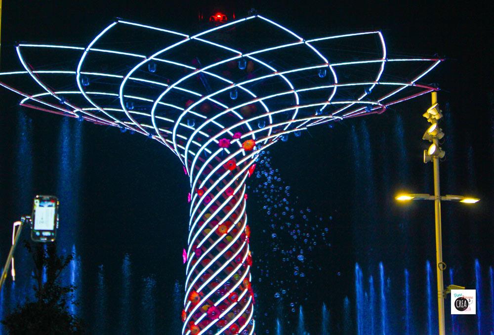 albero della vita notte - expo