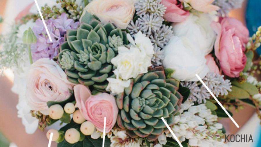 bouquet di piante grasse